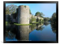 BISHOPS PALACE WALL MOAT WELLS, Framed Print