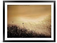 Fly By Dawn, Framed Mounted Print