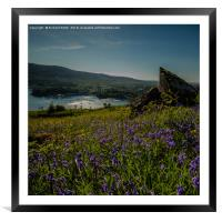 Portree from a carpet of Bluebells on Ben Chracaig, Framed Mounted Print