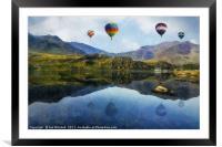Morning Flight, Framed Mounted Print