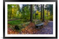 Autumn Forest Walks, Framed Mounted Print