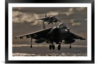 Harrier pair, Framed Mounted Print