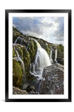 Loup of Fintry in portrait , Framed Mounted Print