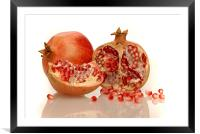 Pomegranate , Framed Mounted Print