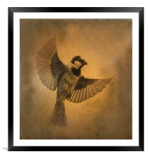 Flight of the Sparrow, Framed Mounted Print