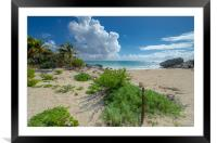 Mexico.Tulum., Framed Mounted Print