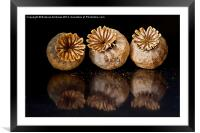 Three of us, Framed Mounted Print