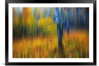 In the Golden Woods. Impressionism , Framed Mounted Print