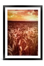 Reap What You Sow, Framed Mounted Print