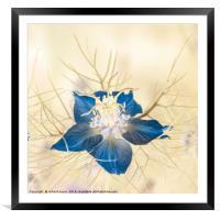 Love Inversion, Framed Mounted Print