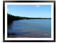 Mangrove Bay, Framed Mounted Print