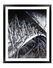 Panther Hollow Bridge, Pittsburgh, Pennsylvania, Framed Mounted Print