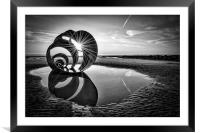 Mary's Shell Black and White, Framed Mounted Print