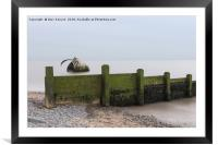 Mary's Shell Cleveleys Beach, Framed Mounted Print