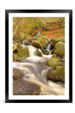 Woodland Stream In Autumn, Framed Mounted Print