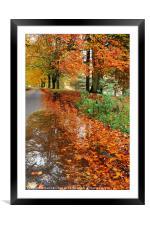 Derbyshire Leafy Lane in Autumn, Framed Mounted Print