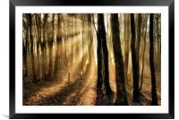 Misty rays, Framed Mounted Print