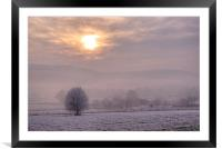South Downs Hoar Frost, Framed Mounted Print