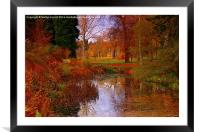 Autumns Golden Colour, Framed Mounted Print