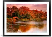 Autumn Sunset at Hardwick Park, Framed Mounted Print