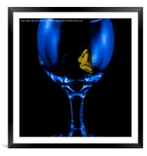Moth on a Wine Glass, Framed Mounted Print