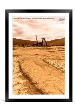 Salt and Clay Pan at Deadvlie, Namibia, Framed Mounted Print