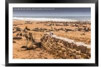 Cape Cross Fur Seals - Namibia, Framed Mounted Print