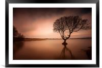 Kenfig pool and tree, Framed Mounted Print