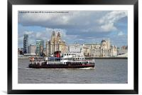 Snowdrop on the River Mersey,, Framed Mounted Print