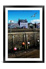 Aberaeron Harbour, Tide out!, Framed Mounted Print