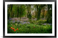 The Enchanted Wood, Framed Mounted Print