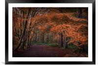 Autumnal, Framed Mounted Print