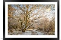 Walk in the Snow, Framed Mounted Print