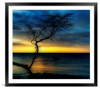 Peaceful Hawaii, Framed Mounted Print