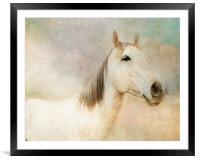 Spirit Horse, Framed Mounted Print