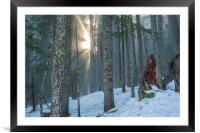 Woods on a Winter's Day, Framed Mounted Print