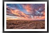 Land of Sagebrush and Wild Horses, Framed Mounted Print