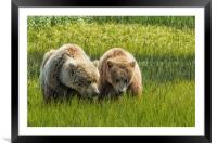 Eating Side by Side, Framed Mounted Print
