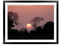 Sunset Ball, Framed Mounted Print