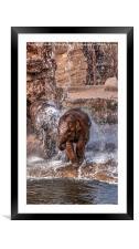 Baby Elephants Joy, Framed Mounted Print