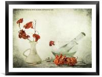 Red Maple, Framed Mounted Print