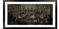 Trees In The Marsh, Framed Mounted Print