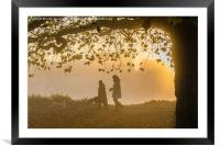 Misty morning for walking the dogs, Framed Mounted Print