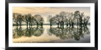 Reflections in the Flood, Framed Mounted Print
