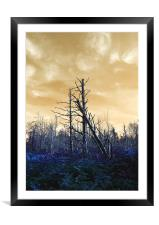 Death of The trees, Framed Mounted Print