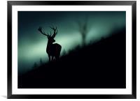 deer in the Wood, Framed Mounted Print