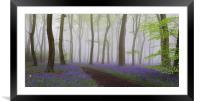 Bluebells Heaven, Framed Mounted Print