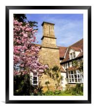 Spring Colours, Framed Mounted Print