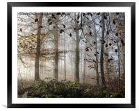 Misty Autumn, Framed Mounted Print