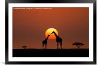African Sunset, Framed Mounted Print